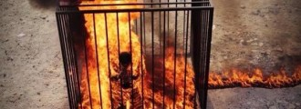 BREAKING: ISIS Burns Jordanian Pilot Alive (VIDEO)