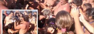 SELFISH BASTARDS! Baby Dolphin Dies After Crowd Passes It Around Taking Selfies