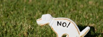 Wait, What? Neighborhood DNA Testing Dog Poop to Charge Offending Owners