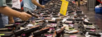 Prudence Asks: After the Virus Scare, How Do I Own a Gun?
