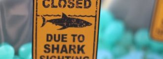 Sharks Are Attacking … So Let's Shutdown Every Beach! … Because It's 2020